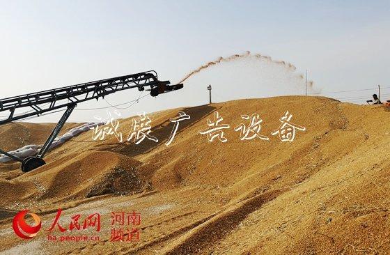 """让""""中国碗""""多盛""""河南粮""""  8600万亩小麦颗粒归仓,今年又是一个丰收年!近年来,<a href="""
